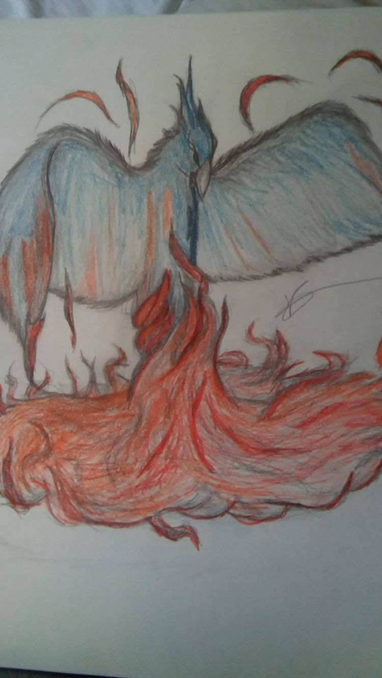 interpretation phoenix - freehand - visualgalaxy | ello