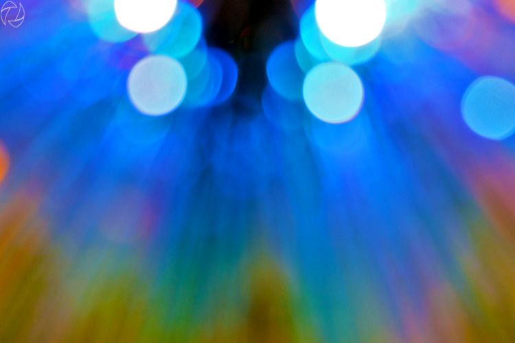 lights, macro lens intended pur - jung_photo   ello