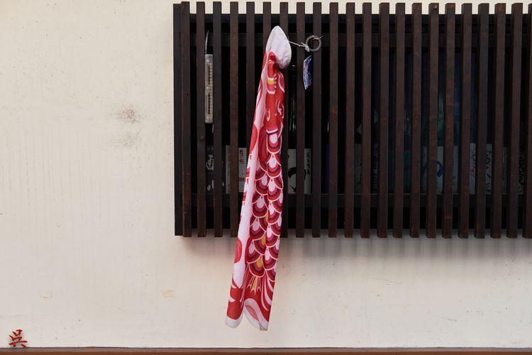 Decoration - Tokyo, Japan, CarpStreamer - gullevek | ello