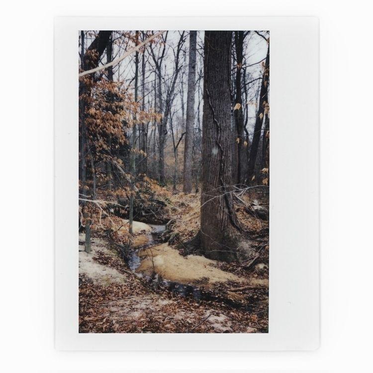creeks snowfall - instax, filmisnotdead - tatebot | ello