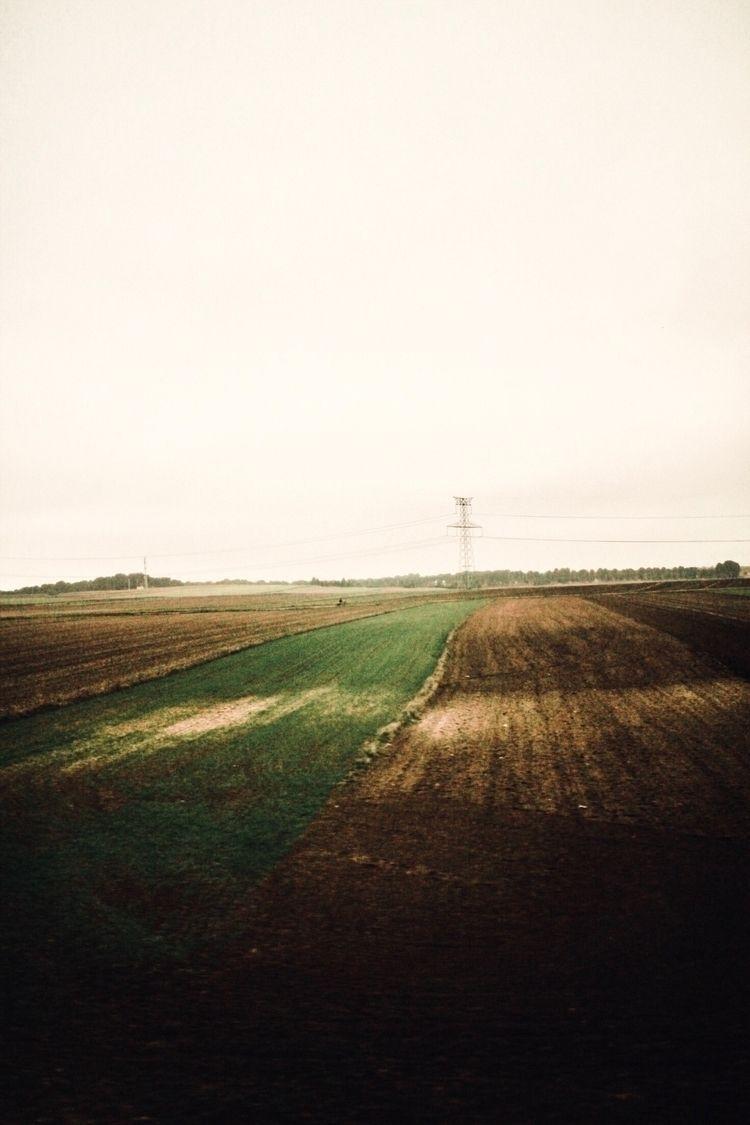 vintage, analogic, camera, nature - elena__anpi | ello
