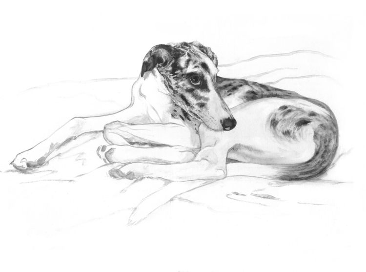Bragi. Acyclic canvas. 2018 - dog - tikaviker-bloss | ello