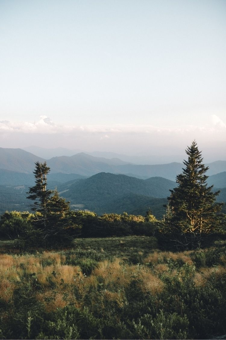 Sunset Roan - wandernwill | ello