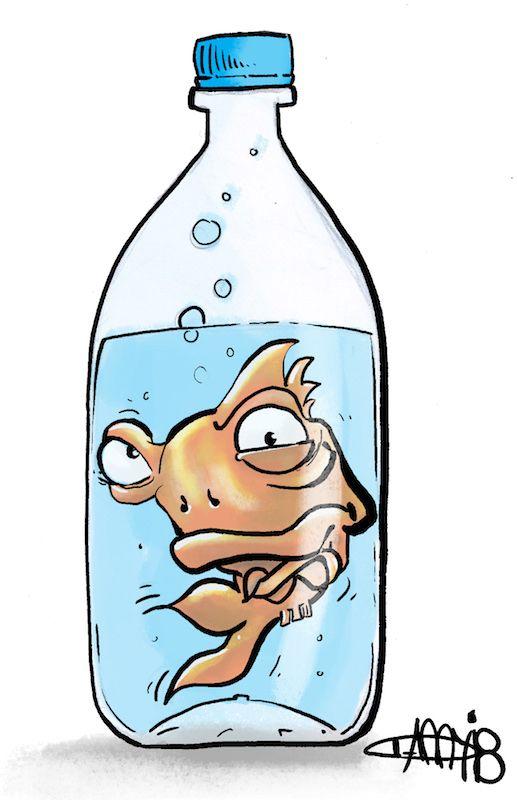 pet fish bottle. question remai - zemp | ello