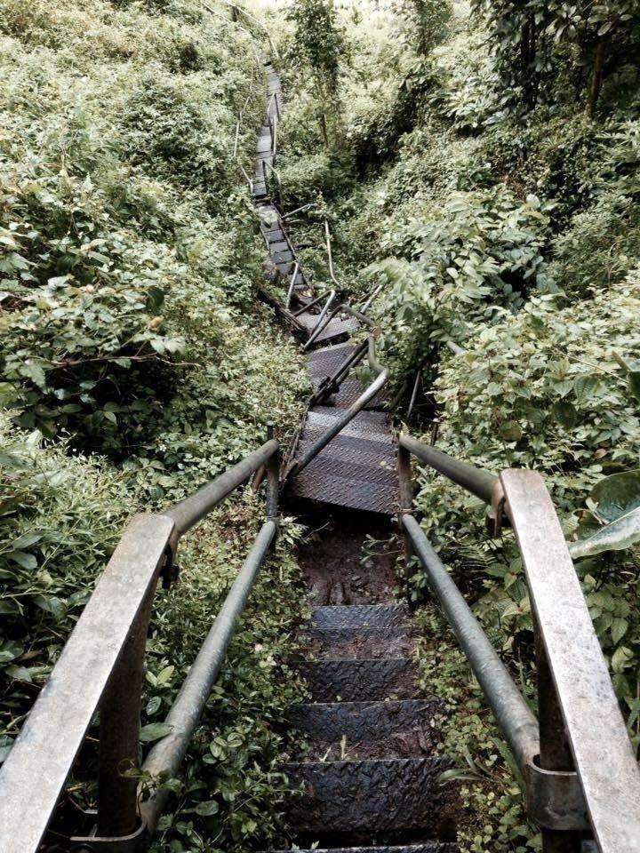 Hawaii, stairway heaven - photography - efieralds | ello