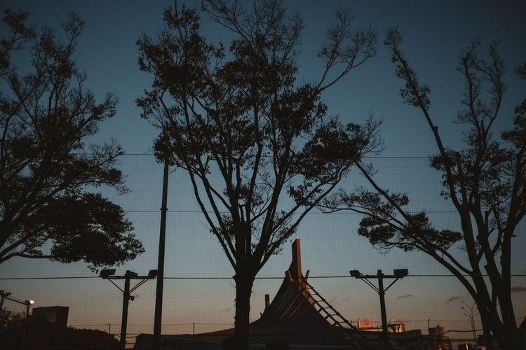 Tokyo - tokyo, japan, city, artofvisuals - adamkozlowski | ello