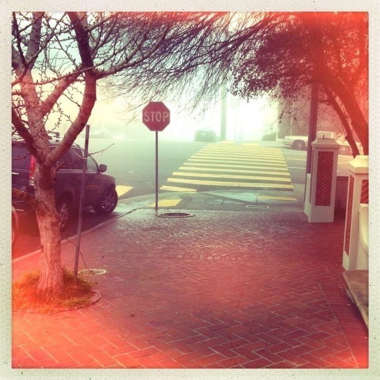 fog - bigee926 | ello