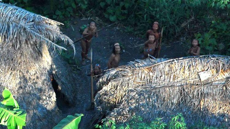 Más de 100 tribus contactadas»  - codigooculto | ello