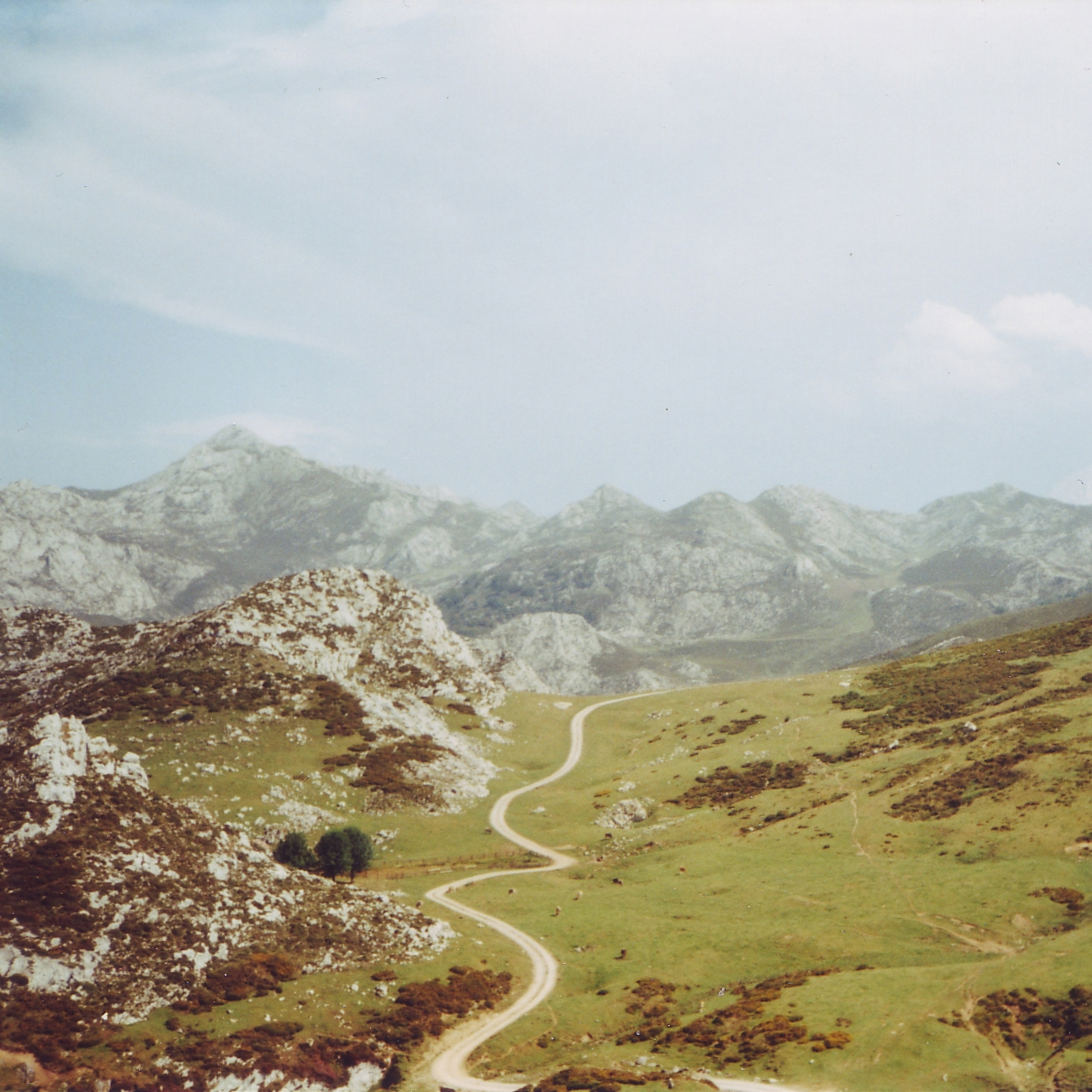 ANALOG MEMORIES - photography, landscape - lapremioqueen   ello