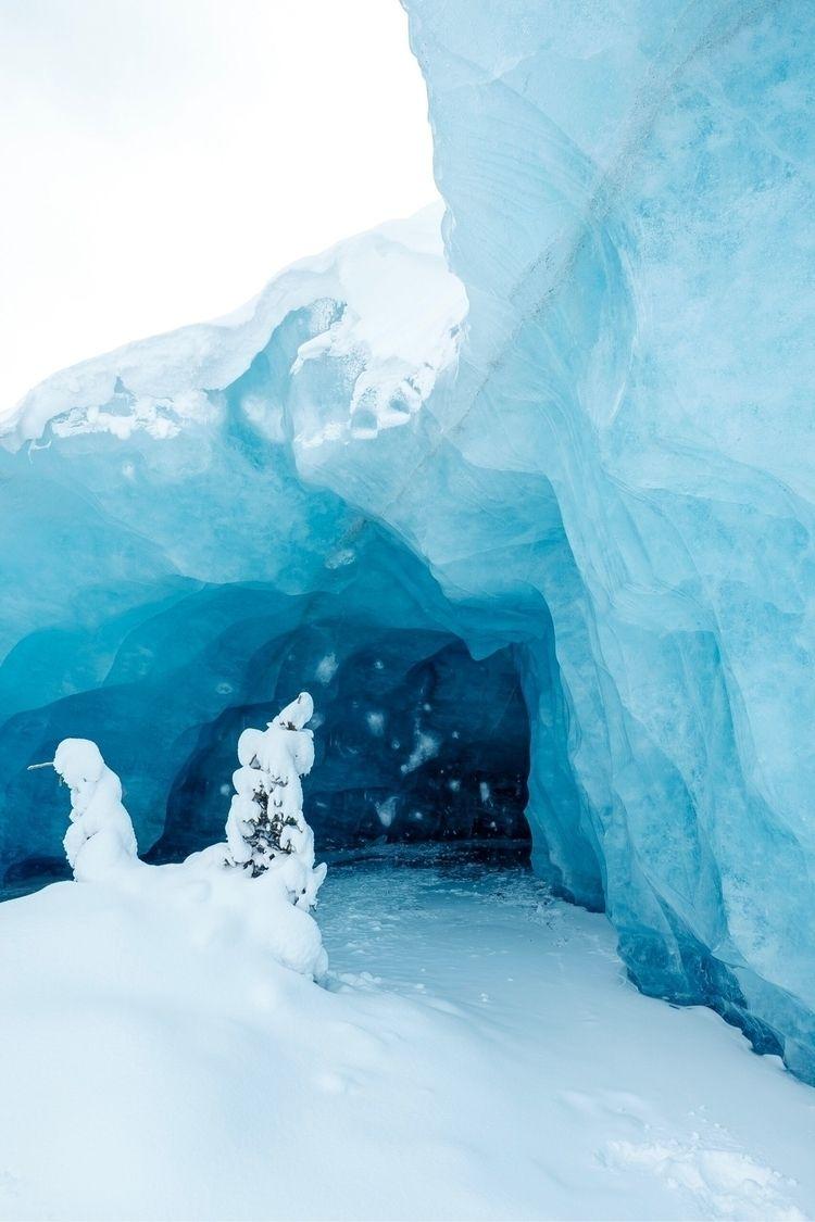 live spruce tree glacier cave 1 - bradcarter | ello