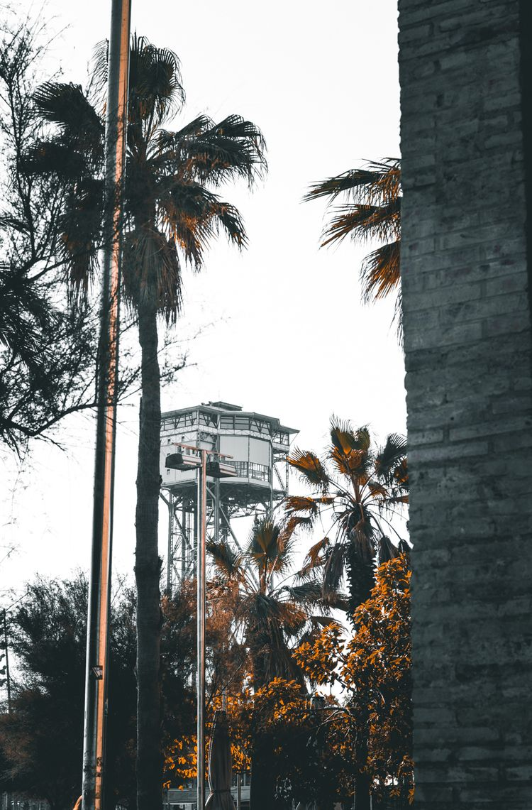 35mm, film, analogicphoto, filmshot - joellloret   ello
