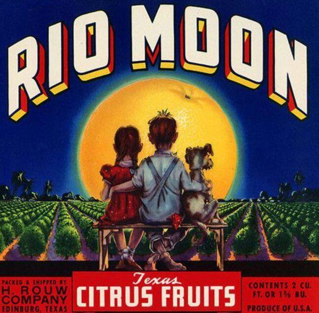 Rio Moon - broodingsquid | ello