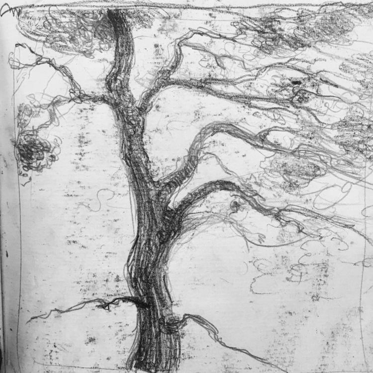 elloart, ello, tree, graphite - yuliavirko | ello
