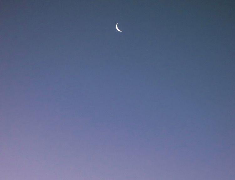 Dark Side Morning Eva: Based Ba - c_by_eva | ello