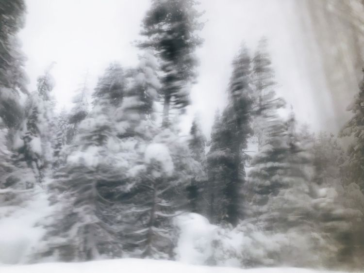 Blurred vision - blurryphoto, winter - forgetme_not | ello