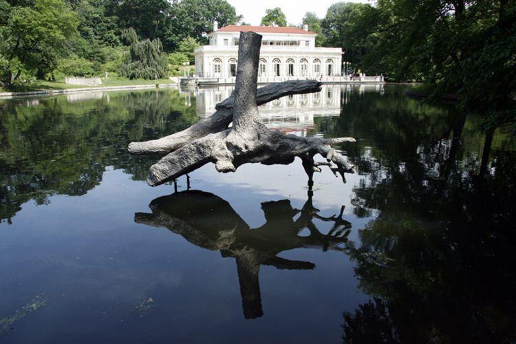 Robert Lobe + Nature - quietlunch | ello