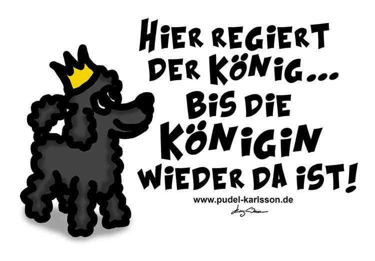 King Karlsson - pudelkarlsson | ello