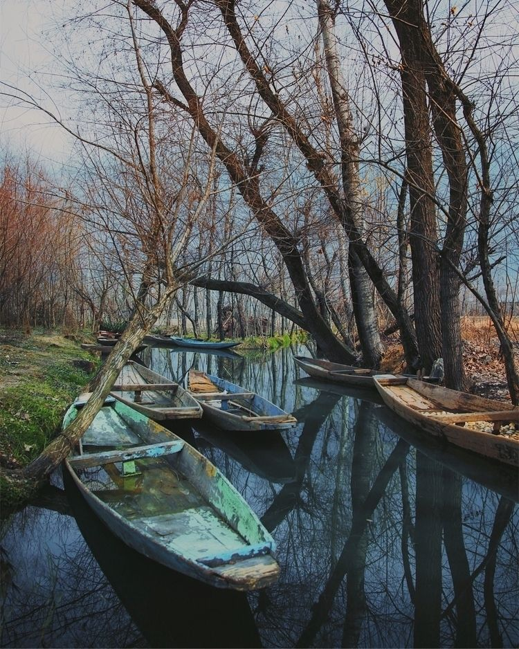Perfect reflections - morning, india - riazhassan   ello