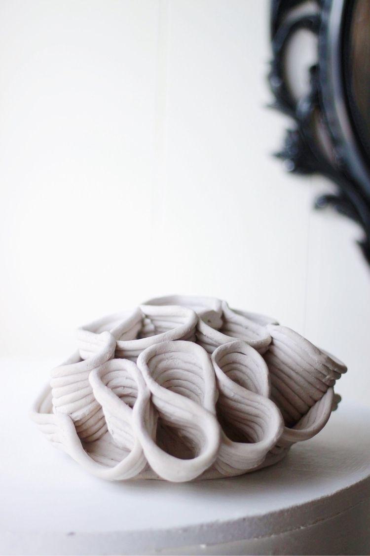 Lettuce/ cabbage sponge coral.  - swastographystudios   ello