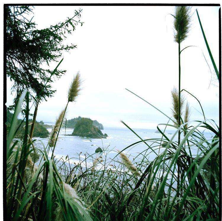 travel, nature, scenic, lost - colleen_mescole | ello