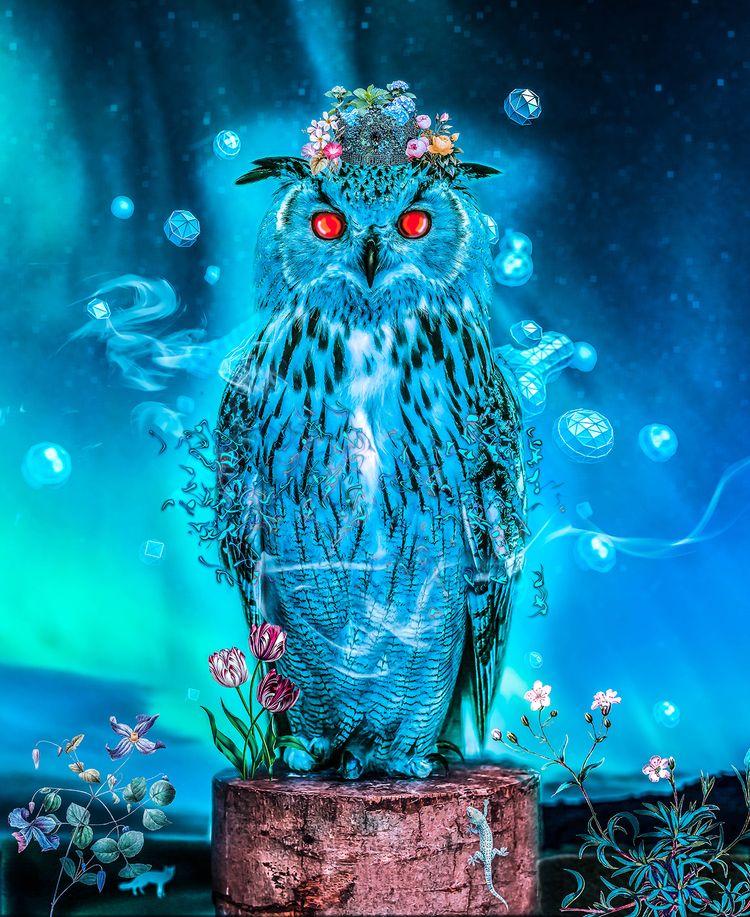 Sapphire Owl - ritaisabel | ello