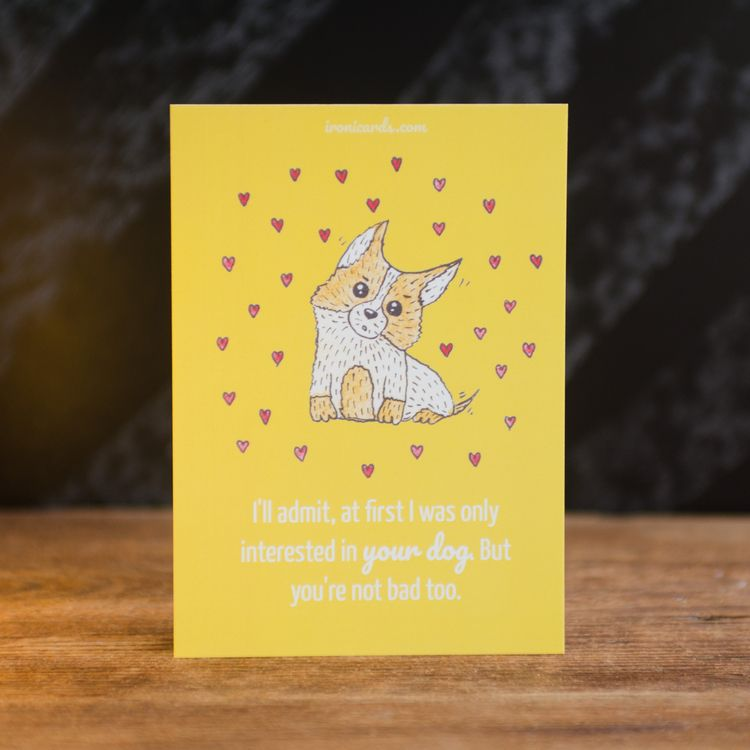 admit, intersted dog. bad card  - d7che | ello