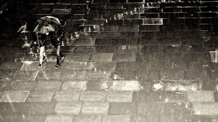 Walking rain - pavement, street - toni_ertl | ello