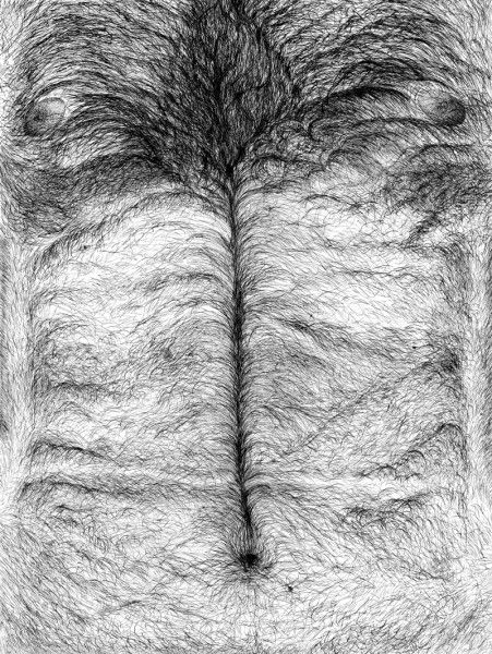 ink drawing - torso - male, hairy - josemanuelhortelanopi | ello