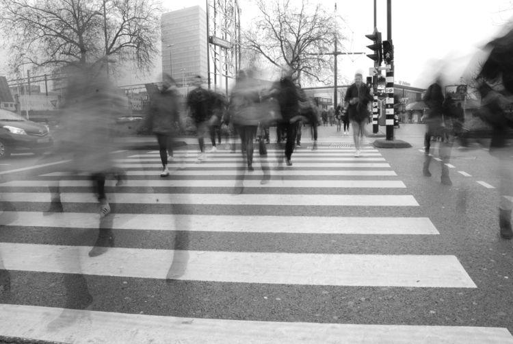 Street, Train, Eindhoven, Traffic - inezfranken | ello