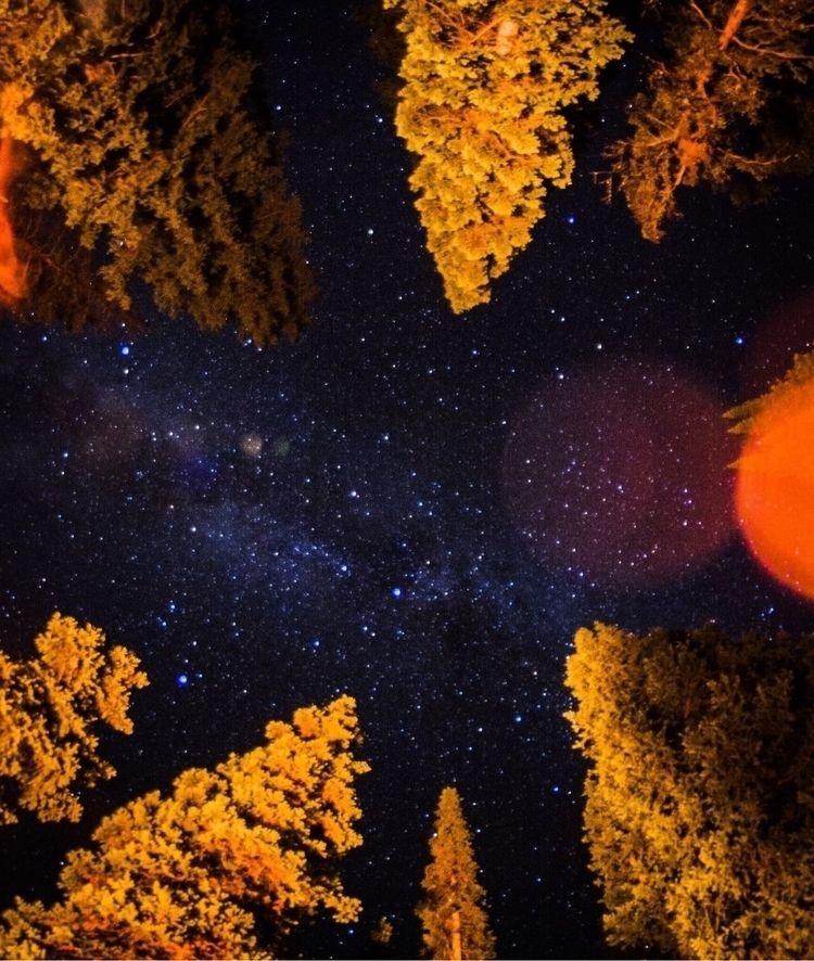 Starry night camping - petejohnson | ello