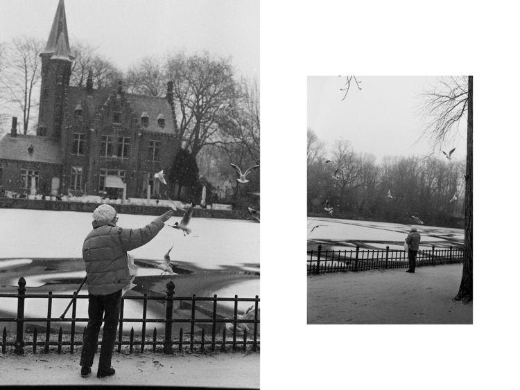 Feeding birds snowy day. Bruges - brecht_vanhoutte   ello