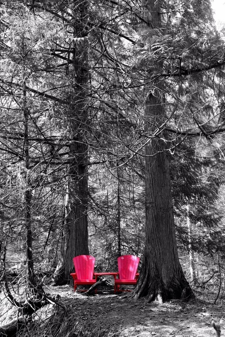seats house Red Chair Experienc - camwmclean | ello
