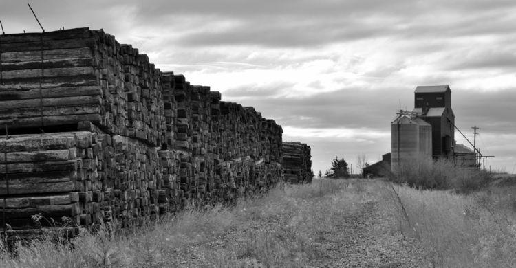 image Delia. railroad ties rest - camwmclean | ello