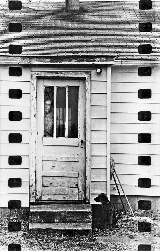 man dog Experimental stuff late - photostatguy | ello