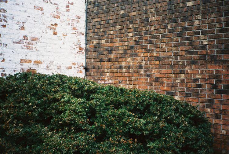 Boonton, NJ Minolta Freedom III - antihenri | ello