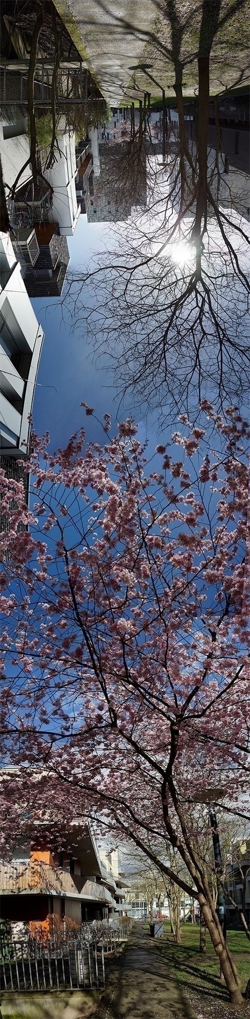 Le 4 avril, panorama presqu'ide - gclavet | ello