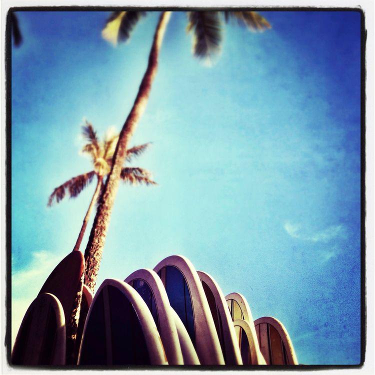 surfs Waikiki, Oahu - surf, surfing - russell2 | ello