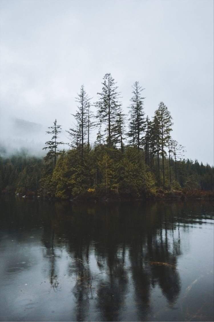 elements. Buntzen Lake, BC - davidarias | ello