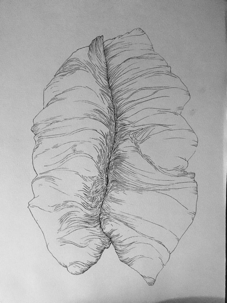 series drawnings explore moveme - kitokrill   ello