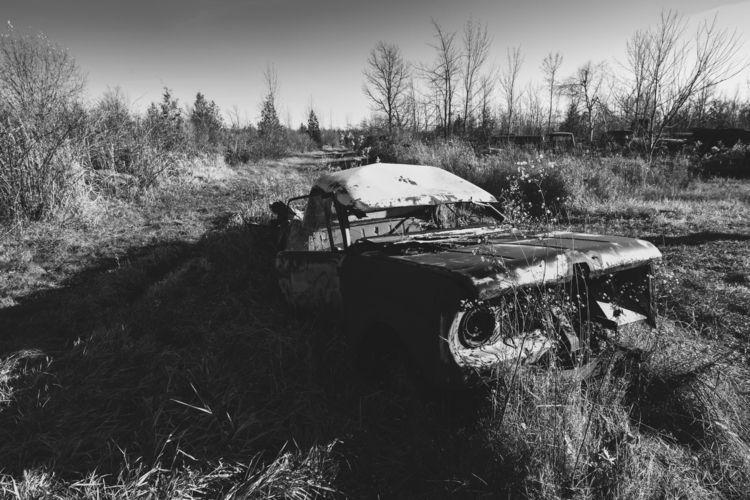 Wasteland - BlackandWhite, Adventure - benroffelsen | ello