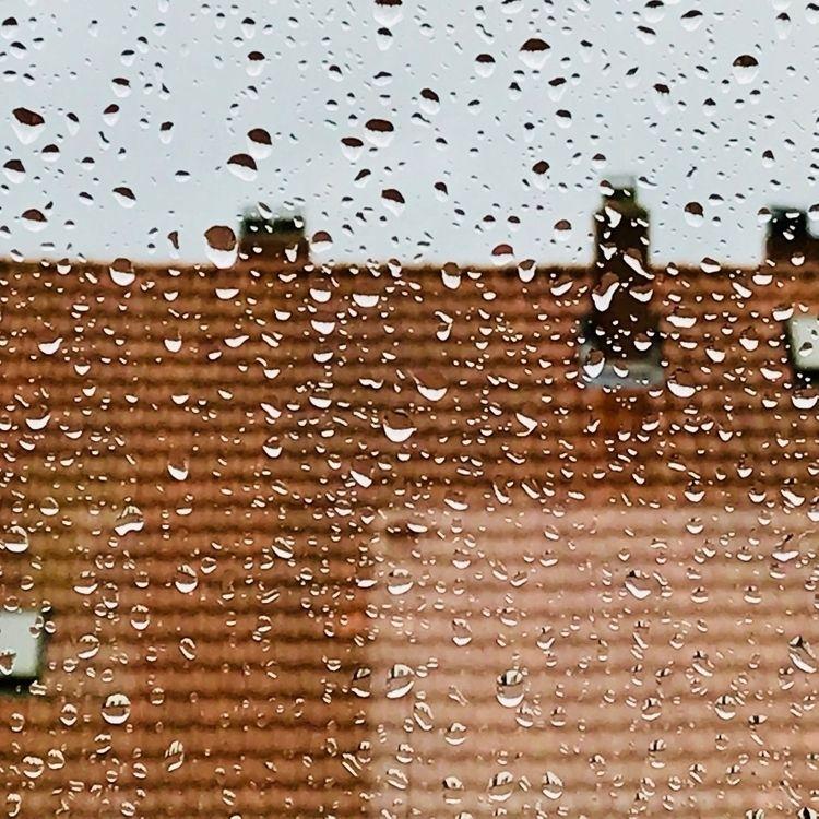 Rainy Day Tablet - friedrich | ello