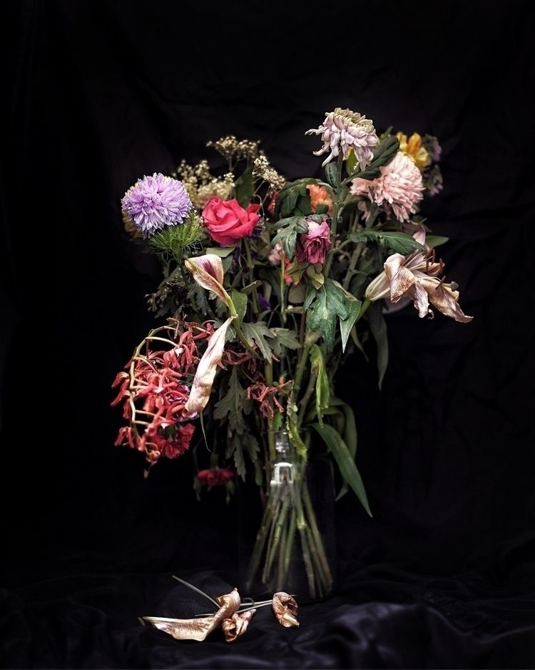 Nature Morte - flowers, deadflowers - mia-haggi | ello