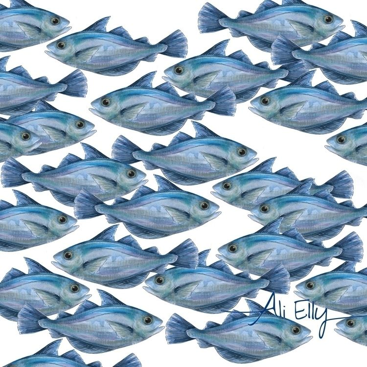 illustration, fish, sea, ocean - aliellydesign   ello