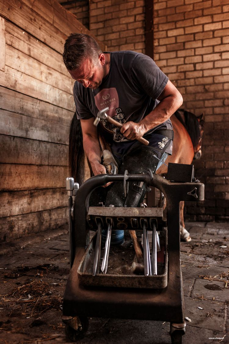 hoefsmid, farrier, holland - marceldegreef | ello
