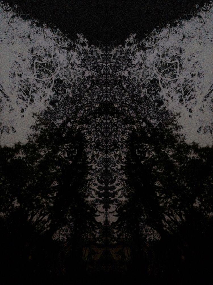 Uterus Tree - uterus, tree, dark - fricke | ello