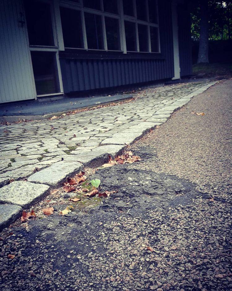 Grönskande asfalt på Griftegård - skogskyrkogardar | ello