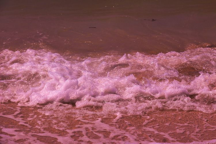 Pink Sea Sisal - mlun4r | ello