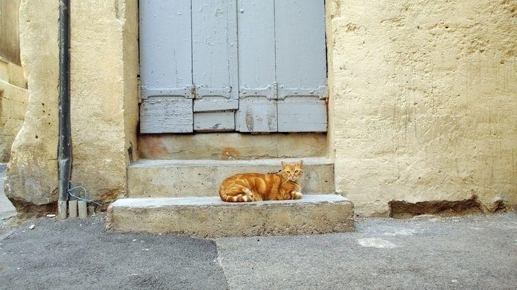 Waiting Godot - deligne | ello