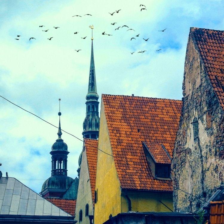 2016. Photo SVIATOSLAV. Riga. t - sviatoslavs | ello