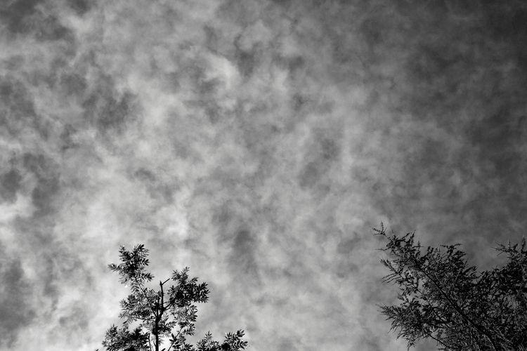 2016 series cloudbase - hana_sitsheaven | ello
